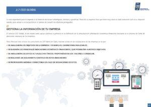 Servicio CEEI Global